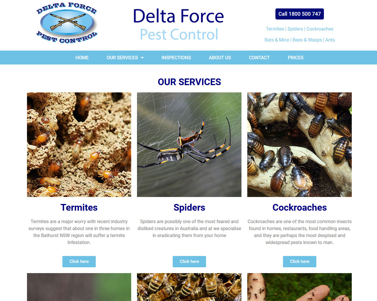 Delta-Force-Pest-Control-Portfolio-Work-Completed